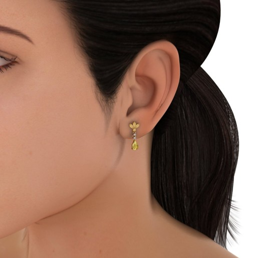 The Picture Perfect Earrings